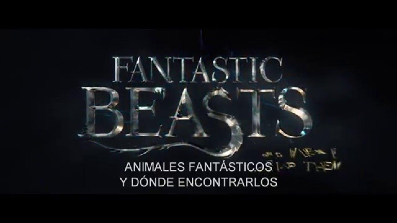 Harry Potter Animales fantásticos y dónde encontrarlos